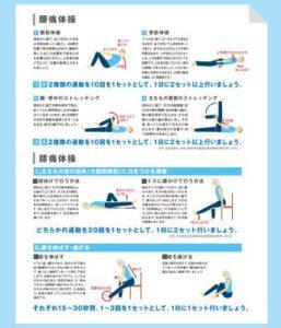 腰痛・膝痛対策になる体操