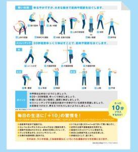 柔軟体操とストレッチング